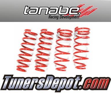 TanabeR DF210 Lowering Springs